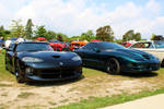 The Viper and Firebird by PhotoDrive