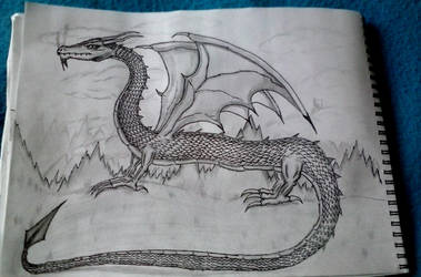 Dragon new by BndDigis