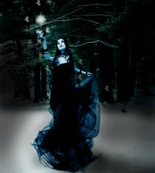 Winter Light by misscandyjunkie