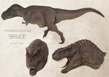 Bruce by JoshuaDunlop