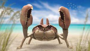 Krabby by JoshuaDunlop