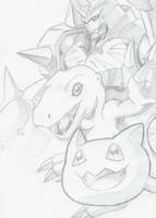Digimon by DarkDragon77