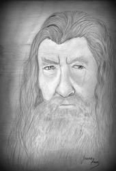Gandalf by Jeanne128