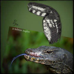 Lizard Face by Vyechi