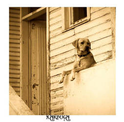 Waiting for ... by nakbuga