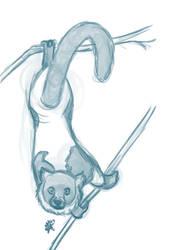 Lemur by starrypawz