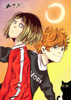 Kenma and Hinata by Heart-Of-Crow