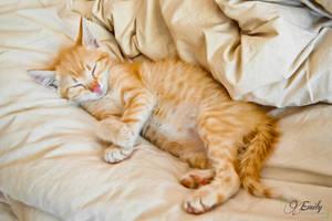 Good night ! by Emmpunct