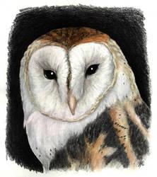 Pale Queen by antoniavogel