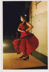 Flamenco by guimaia13