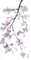 flower by cherrysand