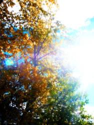 Sunbeam by HecateAn