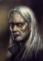Geralt of Rivia by Afternoon63
