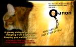 Kitty Q by paradigm-shifting