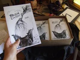 Brain Candy - my art book by zyphryus