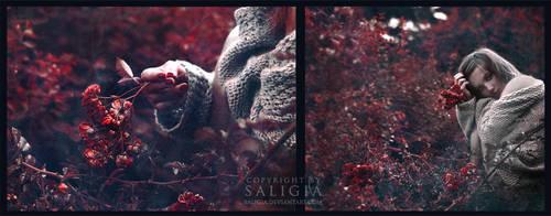 bleeding gardens by JuliaDunin