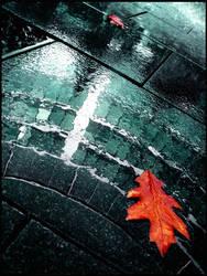 all autumn,  all fall by JuliaDunin