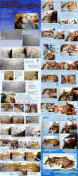 :Watercolor Tutorial: StepStep by GaruryKai