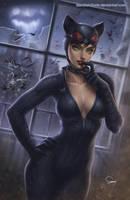 Catwoman by SamDelaTorre