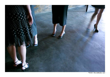 l.a. legs... by cweeks