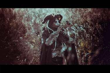 Dreamcatcher by elenasamko