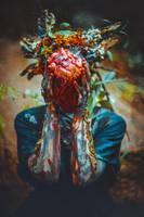 Spriggan's heart by elenasamko
