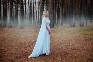 Lady Galadriel Cosplay by elenasamko