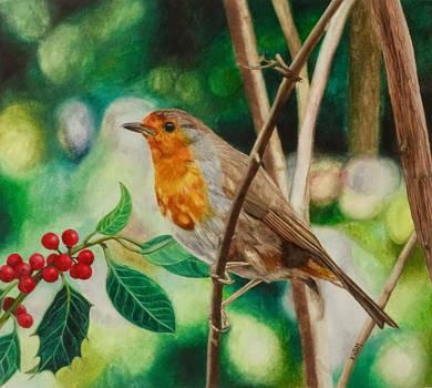 Robin by Mararda