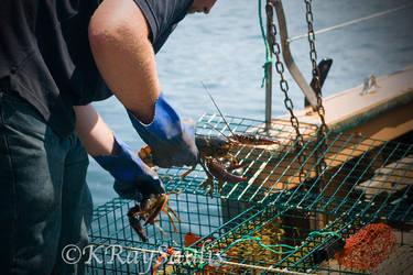 Lobsterman by KRaySaulis