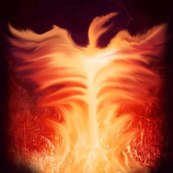 Phoenix by icediamond7