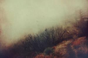 Muddy Sound by EmiNguyen