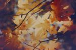 Yellow Sky by EmiNguyen