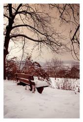 winter neighbourhood by detail24