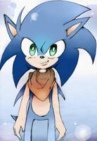 Sonic #1 by ShadowLover133