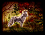 The September Wolf by AprilSilverWolf