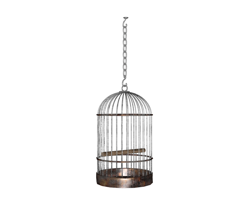 hanging side round birdcage by madetobeunique