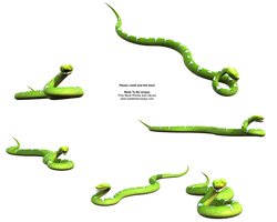 Green Snake in Your Garden by madetobeunique