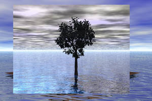 Surreal Floating Tree in Water by madetobeunique