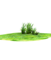 wonderful grass land accent by madetobeunique