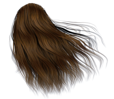 Stock Hair Images #8 long brown windy back by madetobeunique
