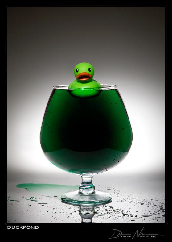 Duck Pond by Davenit