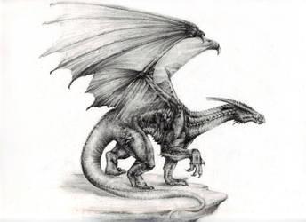 Dragon by Draculea666