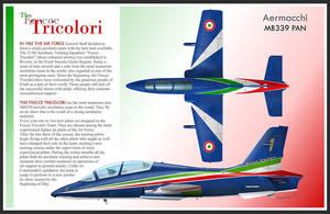 Frecce Tricolori MB-339 Profile by 0viking0