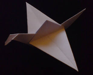 Origami Crane by WilliamFDrake