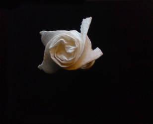 Origami rose by WilliamFDrake