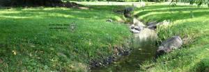 Beside the stream by leopardwolf