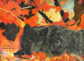 Black wolf in autumn leaves by leopardwolf