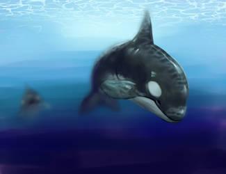 under da sea by tarmie