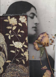 The sense of a flowers by nodah