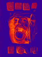 Scream by nodah